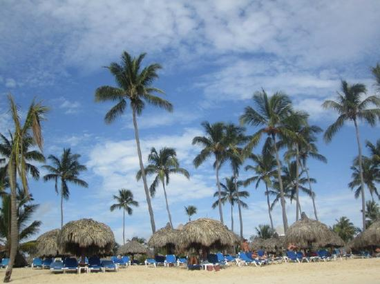 Luxury Bahia Principe Ambar Blue Don Pablo Collection: View of the beach from the water