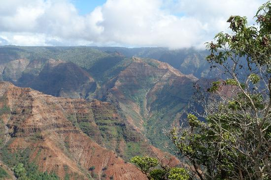 Waimea Canyon: View of the Canyon