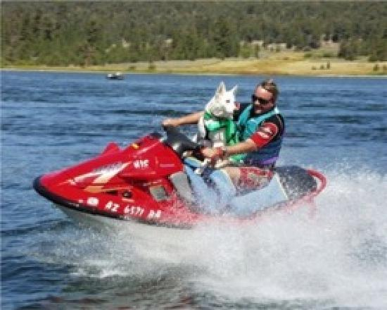 Big Bear Region, Californien: all kinds of boating on the 3000 acre lake