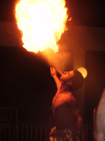 Tuntas Beach Hotel Altinkum : alex and the fire show