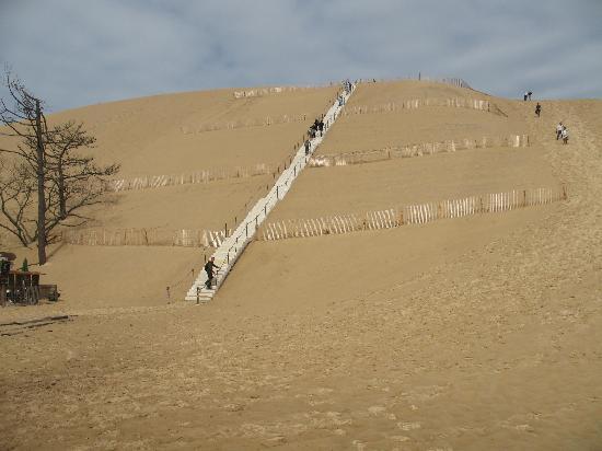 Dune du Pilat : Dune of Pyla