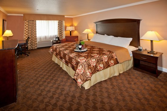 BEST WESTERN Orchard Inn: Comfortable King