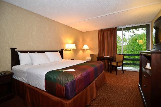 BEST WESTERN Branson Inn and Conference Center: King Room