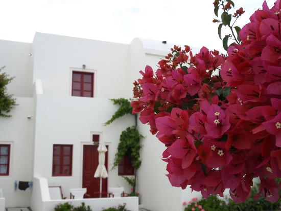 Nikos Villas: Standard Rooms
