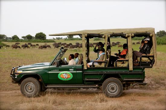 Mweya Safari Lodge: On Safari at Mweya Lodge
