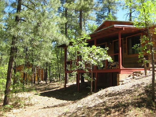 Pinetop-Lakeside, Аризона: Cabin 16