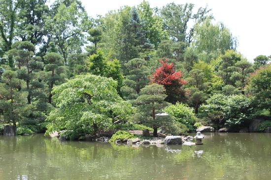 beautiful view picture of anderson japanese gardens rockford tripadvisor. Black Bedroom Furniture Sets. Home Design Ideas