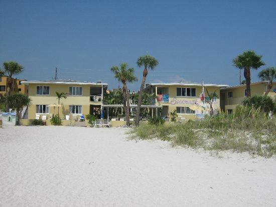 Suncoast Motel: View from the beach