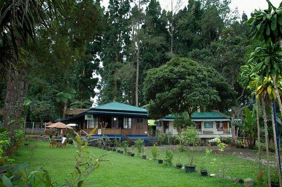 Villa Cemara Situgunung