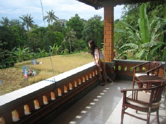 Ubud Sensasi Bungalow : Harvest time