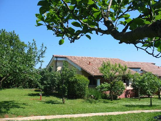 Apartments & Bungalows Lorena: bungalow