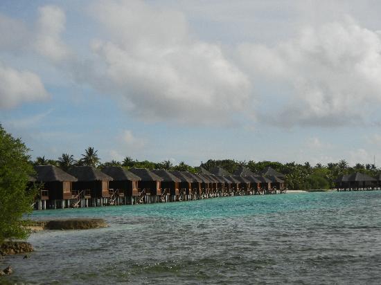 Sheraton Maldives Full Moon Resort & Spa : Water bungalows