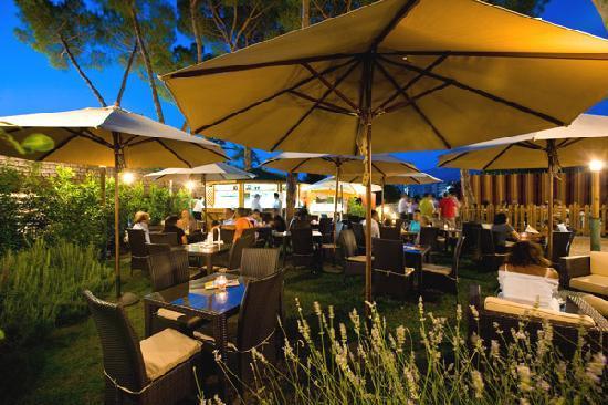 Ristorante Bar Parco Ibsen: Lounge bar