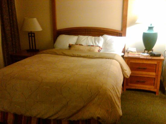 Staybridge Suites Peoria Downtown: The room