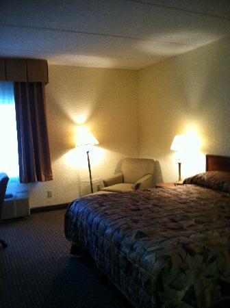 Clarion Inn & Suites: Room