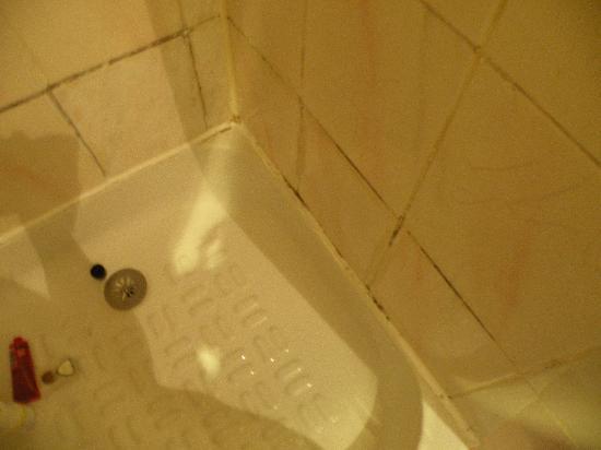 Hotel Mirific Opera: Hotel Mirific bathrrom detail