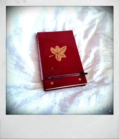 Rhododendron House B&B: Guest book