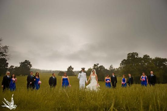 Mineral, VA: wedding photo in the ifield