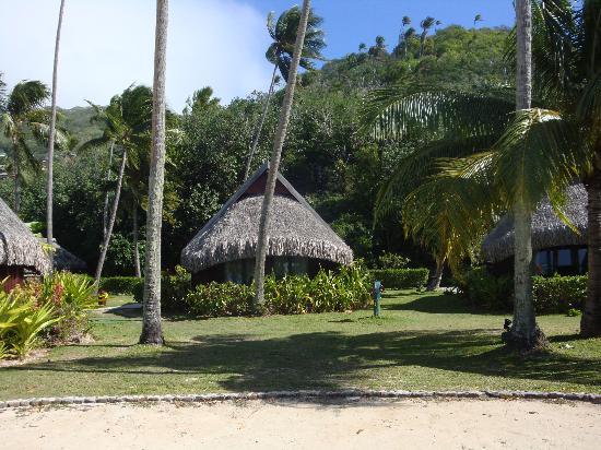 Luxury Garden Bungalow Foto De Sofitel Moorea Ia Ora Beach