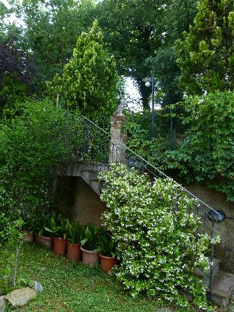 Agriturismo Cesani: Grounds