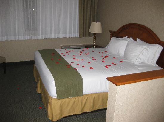 Clarion Inn & Suites: King sized bed