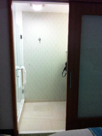 SpringHill Suites by Marriott Lake Charles : Shower and sink