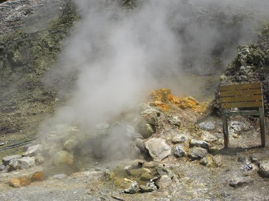Vulcano Solfatara : Solfatara