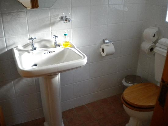 Hillcrest View Bed and Breakfast: Bathroom en suite also had a shoer