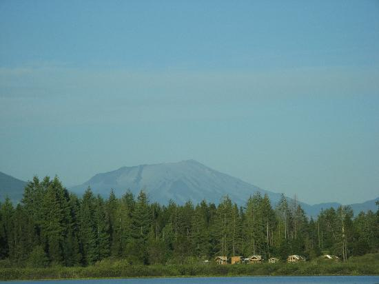 Etat de Washington : Approaching Mt. St. Helens.  You can see how the top has been blown off