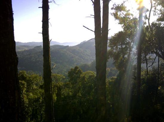 """Kuriuwa Hotel: Vista do chalé """"do bosque"""" pela manhã"""