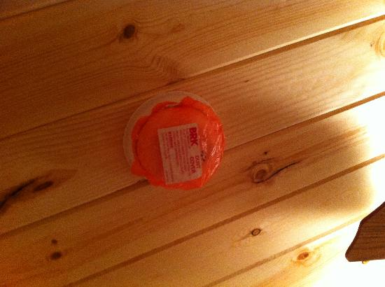 Edge O' Dells Campground: This is one of the unoperational smoke detectors