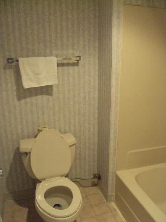 Super 8 Jessup/Baltimore Area: Bathroom