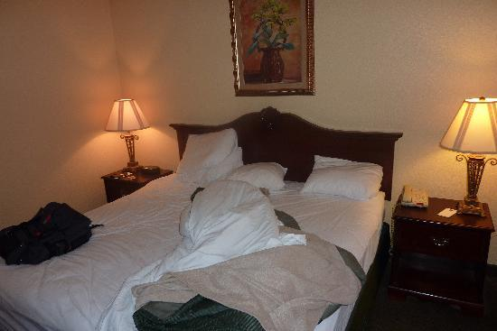Comfort Inn Early: my bed.... sorry for the mess :)