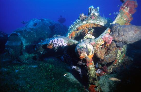 Blue Fin Divers Naxos Greece: Wreck «BEAUFIGHTER»  Βomber Plane Depth:34,5m