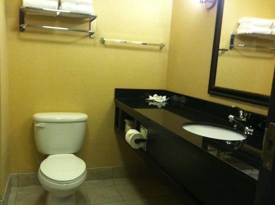 Holiday Inn Columbia East: bath in King suite room