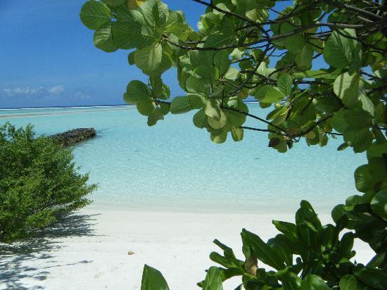 Gasfinolhu Island Resort: la spiaggia di fronte al bar