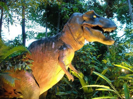 Карон, Таиланд: T-Rex