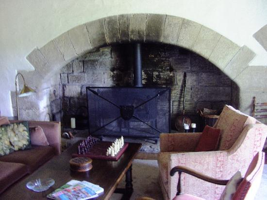 Ogle Castle Bed & Breakfast: Great fireplace in the main lounge/salon