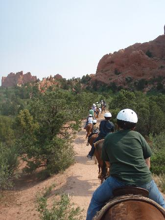 Silver Saddle Motel: Horseback at Garden of the Gods, less than two miles away from Silver Saddle