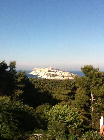 San Domino, Italien: vista sull'isola di S.Nicola dall'appartamento