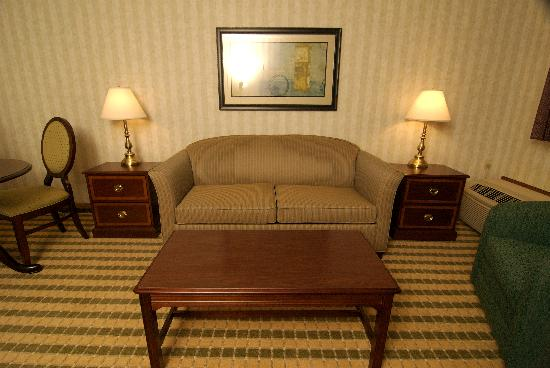 Ramada Saginaw Hotel and Suites: Living room area of a suite