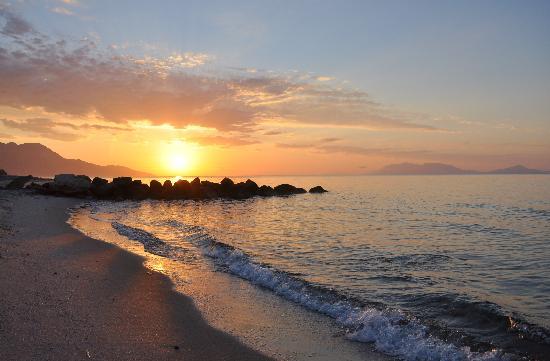 Olympia Mare: sunrise
