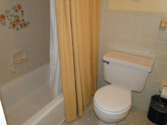 very shallow tubs/ waste paper basket under toilet paper - yuck ...