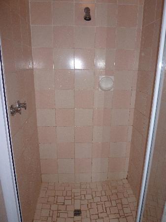 Ingwenya Lodge : Dusche im großen Bad