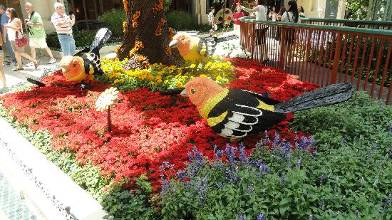Las Vegas, NV: from the botanical display in the Bellagio