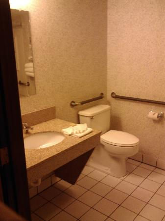 Motel 6 Prospect Heights IL: Bathroom