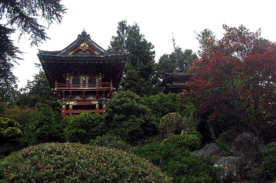 San Francisco, CA: Japanese Tea Garden in Golden Gate Park