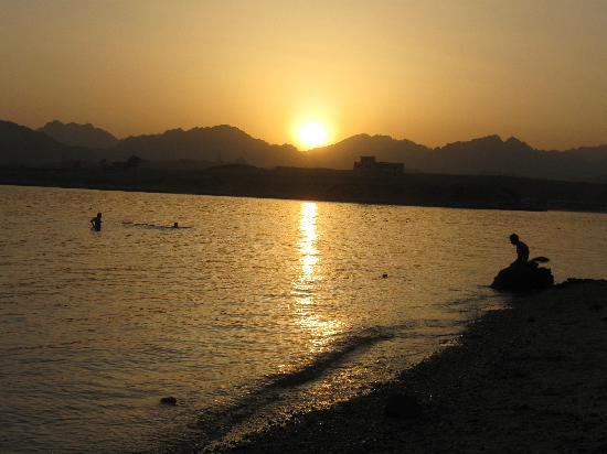 Beach Albatros Sharm : Закат на диком пляже