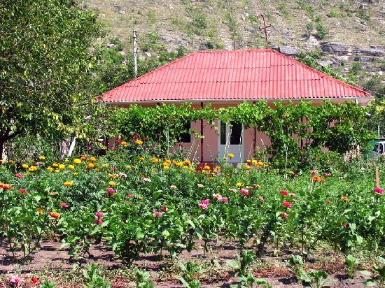 Moldavie : Vila Roz Guest House