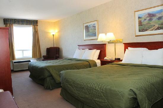 Comfort Inn: standerd room